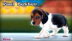get well soon puppy mst3k me