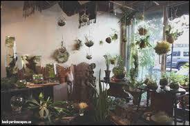 lovely home indoor garden backyard escapes