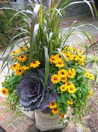 fall container garden very drought tolerant container