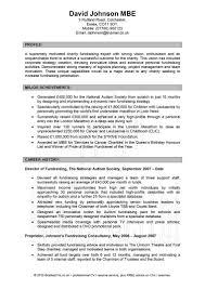 Sample Resume Skills Profile Examples Of Resume Professional Summary