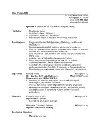 Government Sample Resume by New Rn Resume Template Billybullock Us