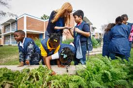schools get kids involved in better nutrition houston chronicle