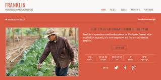 10 powerful crowdfunding wordpress themes and templates for 2013
