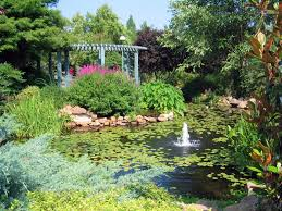 Osu Botanical Gardens by Games Forums Home View Topic Mini U S Tour Of All 50 States