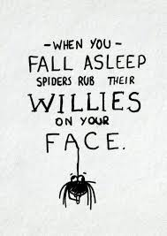 Funny Spider Meme - well this is news to me when you fall asleep spiders rub their