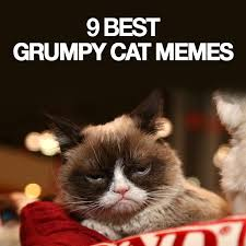Grumpy Cat Meme Images - 9 best grumpy cat memes