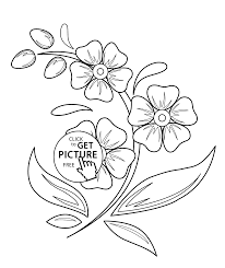flowers coloring pages for kids printable free coloing 4kids com