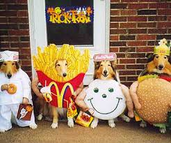 Outrageous Halloween Costumes Outrageous Halloween Costumes Pets