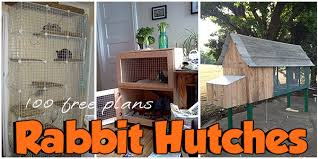 Indoor Hutches 65 Free Rabbit Hutch Plans Planspin Com