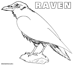 crow coloring pages coloring pages to download and print