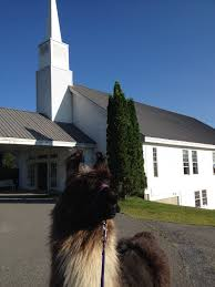 belgian sheepdog clipart children u0027s ministry u2013 lamoille valley church of the nazarene