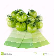 Matching Colors Matching Green Paint Colors To Nature Stock Photos Image 6698263