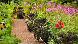 Edible Garden Ideas Practical Edible Landscaping Ideas For Every Garden