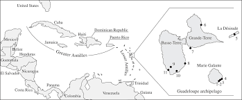 ancient dna from guadeloupe archipelago philosophical
