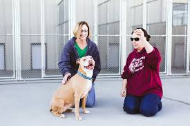 37 diamonds in the ruff animal rescue maria and tammy