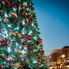 spectacular musical tree shows alexandria times