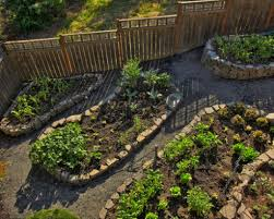 Home Vegetable Gardens by Home Vegetable Garden Design 1000 Images About Vegetable Garden
