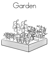 garden coloring pages color luna