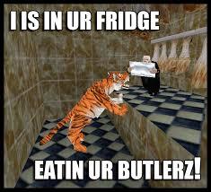 Stupid Cat Meme - stupid internet meme by zcochrane on deviantart