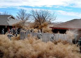 airmen combat tumbleweed invasion u003e cannon air force base