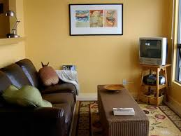 paint colours for living room with chocolate brown furniture
