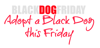 black friday pet adoption black dog friday u2013 green pets america communities