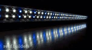 Marine Led Strip Lights Current Usa Satellite Leds Are The Most Refined Aquarium