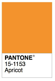 Apricot Color 51 Best Color Names Pantone Images On Pinterest Color Names