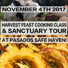 narn northwest animal rights network thanksgiving prep cooking