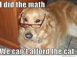 Dog With Glasses Meme - i did the math weknowmemes