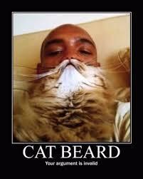Cat Beard Meme - cat beard meme by bieberfan memedroid