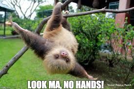 Sloth Meme Images - slothville sloth memes