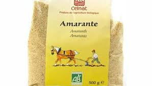 comment cuisiner l amarante amarante plante définition et recettes de amarante plante