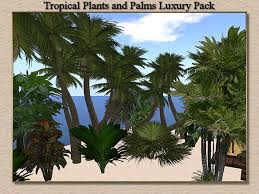 second marketplace stock clearance sale tropical sculpted