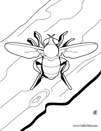 bee coloring pages hellokids com