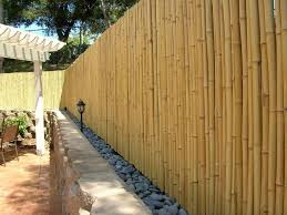 bamboo fence roll fences pinterest bamboo fence backyard
