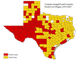 Texas Map By County Texas Department Of State Health Services Infectious Disease