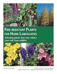 Wild Fires In Oregon State by Fire Resistant Plants For Home Landscapes Osu Extension Catalog