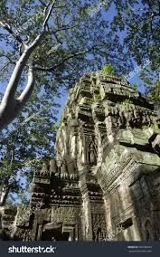 angkor wat jungle temple ta prohm stock photo 239780293