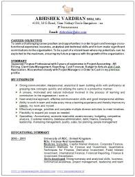 Resume Good Format Best 25 Good Resume Objectives Ideas On Pinterest Good Resume