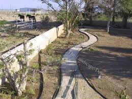Southwest Landscape Design by Flagstone Walkway Construction