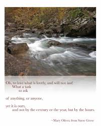 quotes about beauty of fall march 2015 ozarkmountainhiker