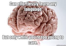 Brain Meme - scumbag brain memes quickmeme