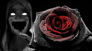black roses black free heart attack