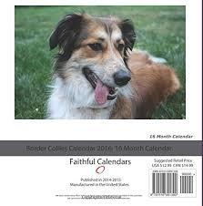 australian shepherd 2016 calendar border collie dogbreed gifts com border collie calendars