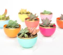 craft it diy mini spring succulent planters plastic easter