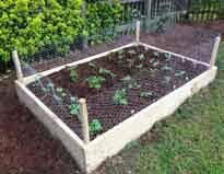 Backyard Raised Garden Ideas Best Of Backyard Raised Vegetable Garden Ideas Raised Garden Beds