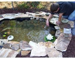 Build Backyard Pond Best 25 A Pond Ideas On Pinterest Outdoor Fish Ponds Building