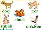 สื่อการสอนภาษาอังกฤษ (คำศัพท์เกี่ยวกับสัตว์) - Class Room Teaching ...