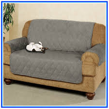 Couch Covers For Bed Bugs Bed Bug Proof Couch Covers Sofa Couches Sofa And Couches